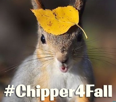Chipper 4 Fall
