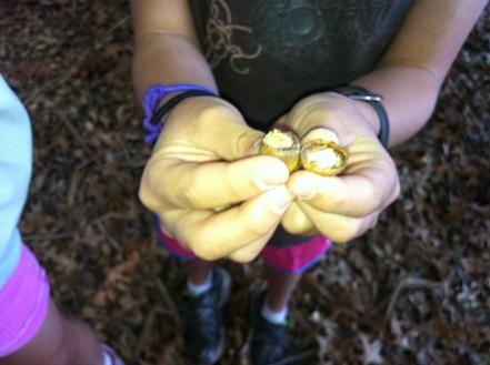 finding acorns