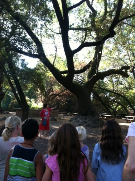 Miwok trail with kids