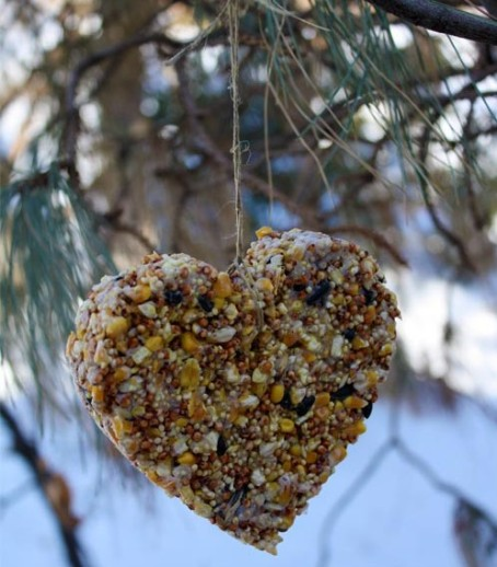 Homemade-Heart-Birdfeeder-e1294930285406