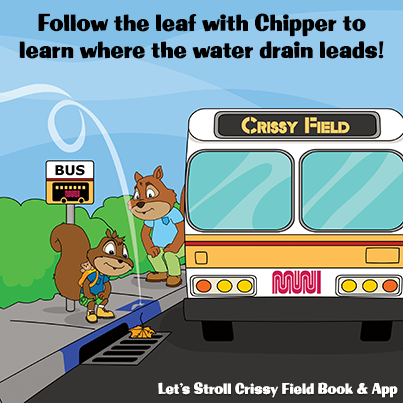Let's Stroll Crissy Fields   Eco-Educational Book and App for Kids   Free Activities